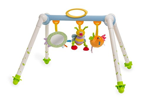 Taf Toys Take-To-Play Baby Gym Baby s All Time Entertainment, Baby Mirror, Detachable Toys, Foldable, Easy Storage And Mobility, No More Child Boredom, Easier Child Development And Parenting