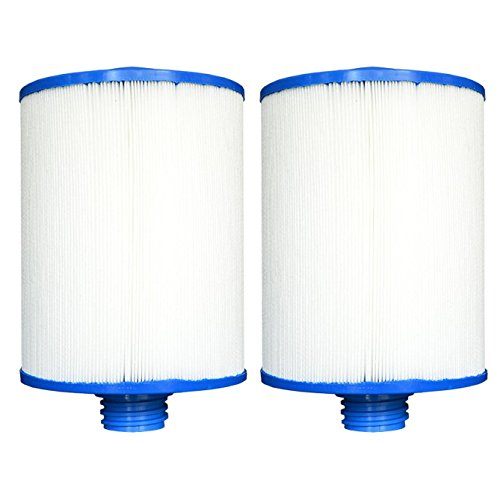Replacement Filter Cartridge for Waterway Front Access Skimmer - 2 Pack ()
