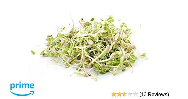 14 different kinds of sprouting seeds mix!! DELUXE MIX! Organic Sprouting Seed
