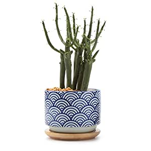 T4U 3 Inch Ceramic japanese Style Serial No.3 succulent Plant Pot/Cactus Plant Pot Flower Pot/Container/Planter White