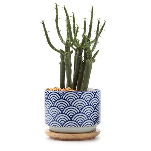 T4U 3 Inch Ceramic Japanese Style Serial No.3 Succulent Plant Pot, Blue Waves Cactus Plant Pot Flower Pot/Container/Planter ()