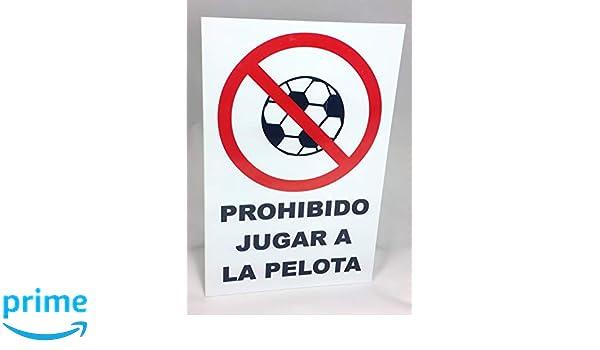 Marina Signboards Cartel Metal 30x20 cm Señal Prohibido Jugar a la ...