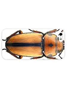 3d Full Wrap Case for iPhone 5/5s Animal Beetle27