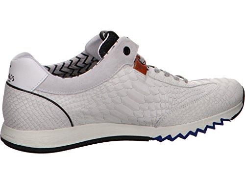 Bommel Van Uomo 10 137 Bianco Sneaker 90042 Floris 5vnf77cp