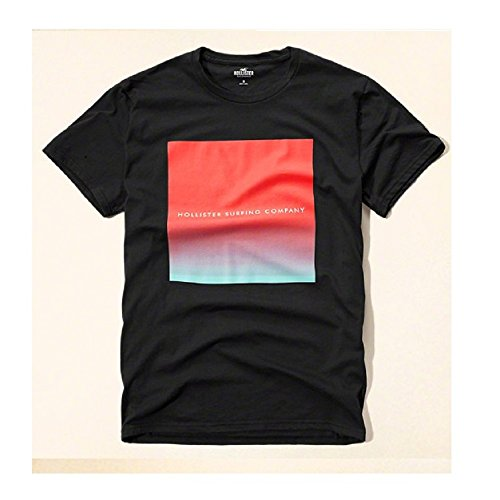 hollister-hco-logo-mens-graphic-t-shirt-tee-xl-navy-23tee