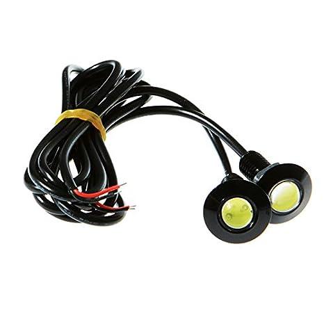 Bombillas LED - 1 par de LED Eagle Eye Bombillas de 6 W de alta potencia universal DRL luces antiniebla Luces de cola: Amazon.es: Coche y moto