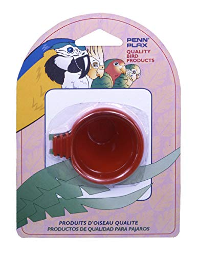 Penn Plax (BA435) Egg Treat Cup for Bird Bath Cage, Assorted