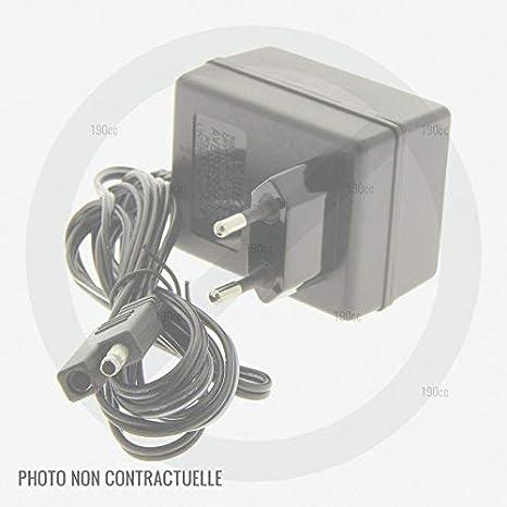 Outils Wolf 24769 - Cargador de batería para cortacésped: Amazon ...
