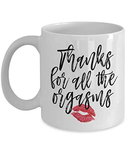 Thanks for All the Orgasms Mug, Funny Anniversary Gifts for Him, Boyfriend Anniversary Coffee Mug, Father's Day ()