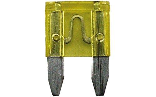 Altium 822620 Confezione da 5 Mini fusibili, 20 ampere