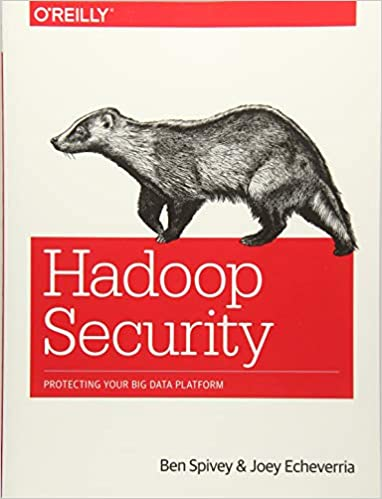 Security platform big protecting pdf hadoop your data