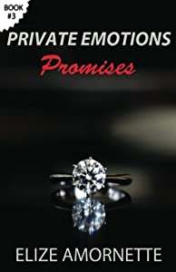 Private Emotions - Promises: An Erotic Romance Novel in the Private Emotions Trilogy. A love story between Emily and Ethan. (Volume 3)