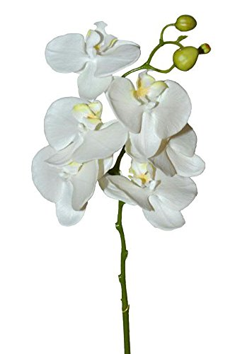 Künstlich Orchidee Phalaenopsis Kunstpflanze Schmetterling Seiden Kunstblume Neu