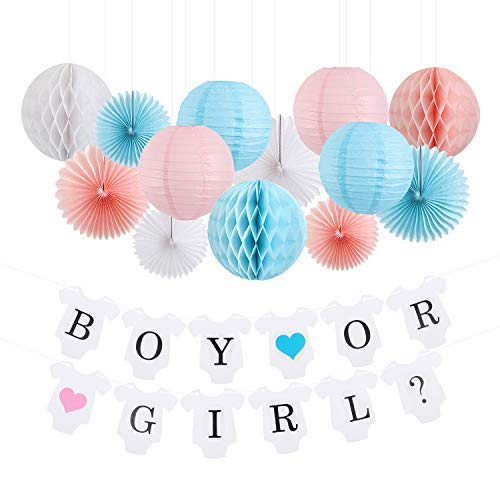 Gender Reveal Party Supplies Boy or Girl Banner - Boy or Girl Party Decorations Baby Shower Party - Gender Reveal Decorations/Decor - Newborn Baby Celebration Pink and Blue Decorations