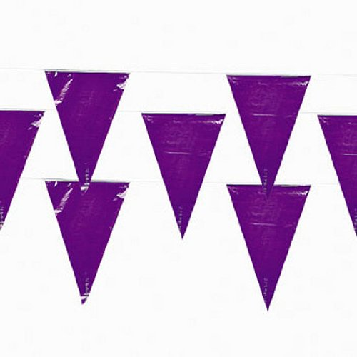 Fun Express Purple Pennant Banner