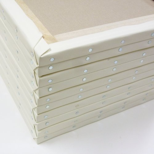 ホワイト 張りキャンバス F15 桐木枠 10枚パック