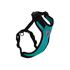 Canine Friendly Vented Vest Harness, Large, Teal Click on image for further info.