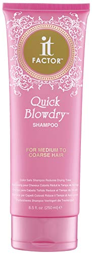 It Factor – Quick Blow Dry Shampoo – For Medium To Coarse Hair – Professional Grade Salon Quality Hair Care…