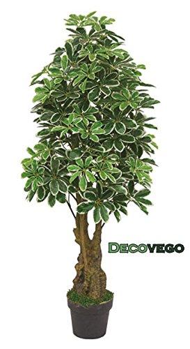 Decovego Schefflera Arboricola Aralie Kunstpflanze Kunstbaum Künstliche Pflanze Schefflera 130cm mit Echtholz