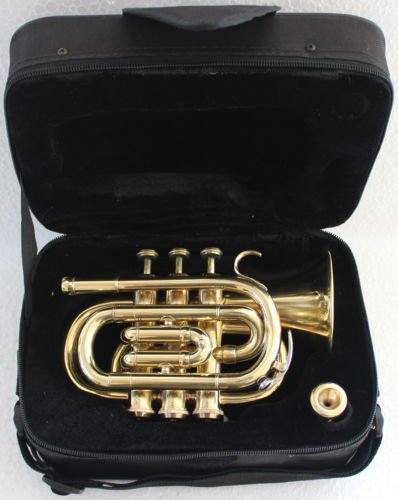 Queen Brass Pocket Trumpet Brass Finish Awesome Sounds Quality Bb W/Case+Mp Gold