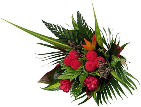 Tropical Bouquet Jewel of the Rainforest with Pink Loofah, Bright Birds of Paradise, and Bold Tropical Greenery