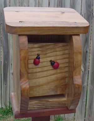 Ladybug House - Walnut
