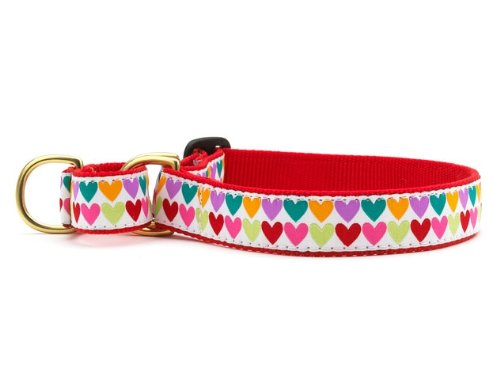 Pop Hearts Martingale Dog Collar Large (13.5-22.5 Inches) - 1 In Width -