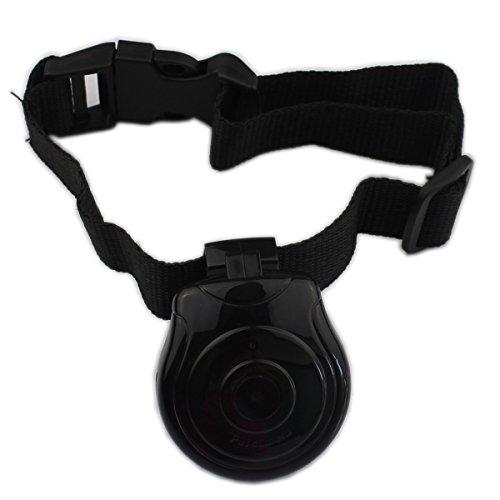 Rlley-Digital-Pet-Collar-Cam-Camera-Dog-DVR-Cat-Memory-DV-Video-Recorder-Monitor-Puppy-Dog-Cat-Black