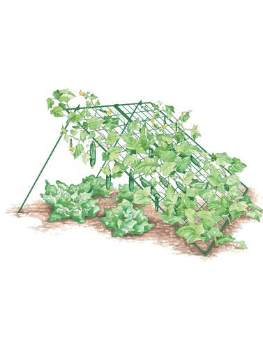 Gardener's Supply Company Large Cucumber Trellis by Gardener's Supply Company