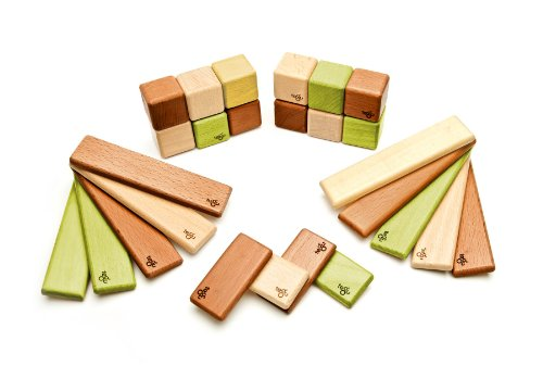 Magnets Jungle - 26 Piece Tegu Discovery Magnetic Wooden Block Set, Jungle