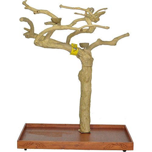 Java Wood Tree Size: Large (32'' L) by A&E Cage Co.