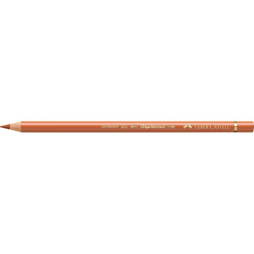 Faber-Castell Couleur Polychromos artistes crayon N//A terre dombre naturelle