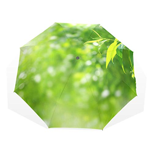 Travel Umbrella Green Willow Leaves In Spring Anti Uv Compact 3 Fold Art Lightweight Foldable Umbrellas(outside Printing) Windproof Rain Sun Protection Umbrellas For Women Girls Kids