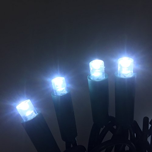 50 Count Led Christmas Lights