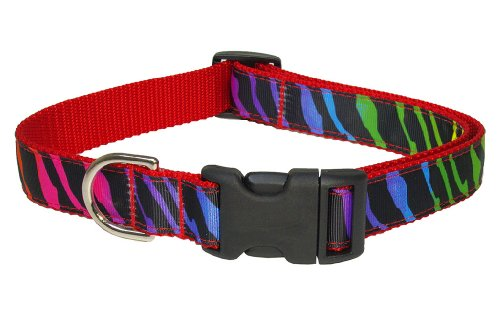 Sassy Dog Wear 18-28-Inch Rainbow/Zebra Dog Collar, Large