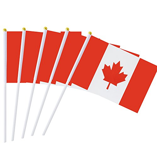 - Kind Girl 25 Pack Hand Held Small Mini Flag Canada Flag Canadian Stick Flag Round Top National Country Flags,Party Decorations Supplies for Parades,World Cup,Festival Events,International Festival