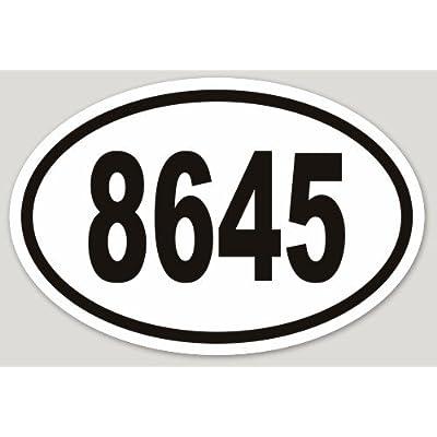 Removable 8645 Bumper Laptop Sticker Vinyl Weatherproof Anti-Trump (1) Supports SPLC: Automotive