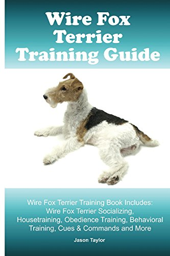 - Wire Fox Terrier Training Guide. Wire Fox Terrier Training Book Includes: Wire Fox Terrier Socializing, Housetraining, Obedience Training, Behavioral Training, Cues & Commands and More