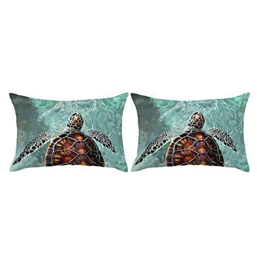 ARIGHTEX Sea Turtle Pillow Case Ocean Pillow Covers Aqua Green Pillow Shams Cute Teenage Boy Girl Pillow Cases Set of 2 (Hawaii Island, Standard 20