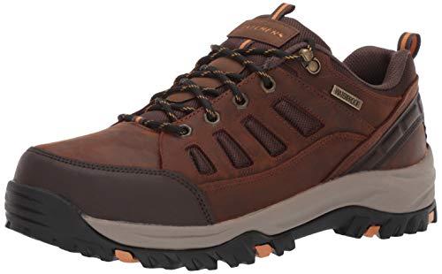 Skechers Men's RELMENT-SEMEGO Waterproof Hiker LO Hiking Shoe CDB 13 Wide US
