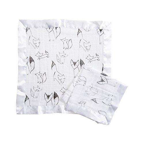 Aden by Aden + Anais Security Blanket 2 Pack, Trotting ()
