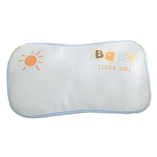 Summer Buckwheat Shell Little Cute Pillow Ice Silk Pillows, D
