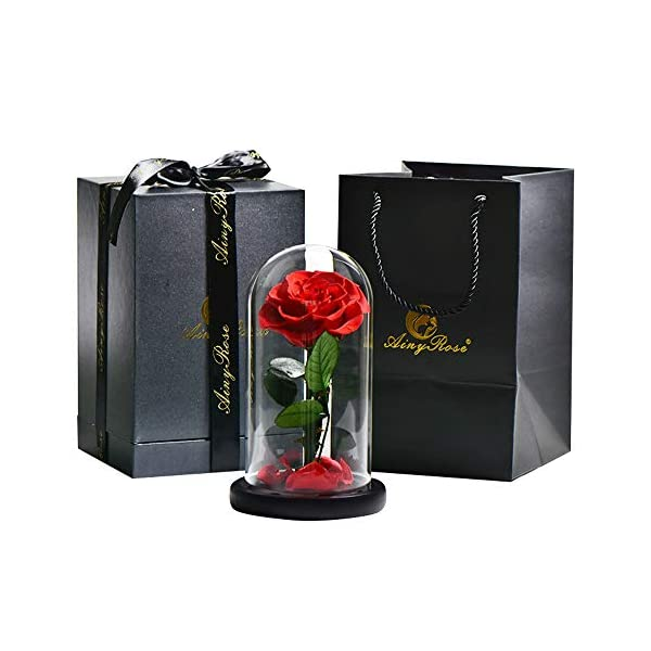 SW Glass Rose -Preserved Real Rose in Glass Dome Gift Eternal Flower,Beautiful Creative Gift for Valentine's Day Mother's Day Christmas Anniversary Birthday Thanksgiving (red)