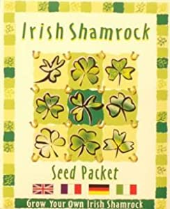Amazoncom The Shamrock Gift Shamrocks Seeds by The Shamrock Gift