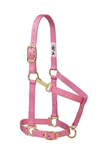 Weaver Leather Basic Adjustable Nylon Halter, Pink, 1 Average Horse