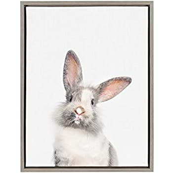 Kate and Laurel Sylvie Young Rabbit Framed Canvas by Amy Peterson, 18x24, Gray