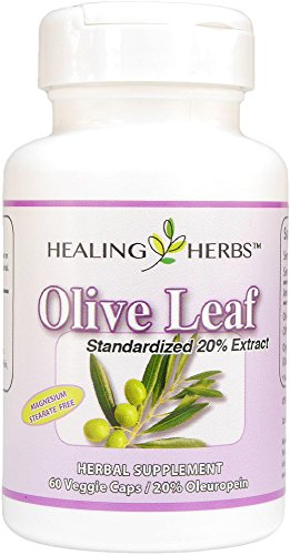 Olive Leaf 20% Standaradized Extract Healing Herbs 60 VCaps For Sale