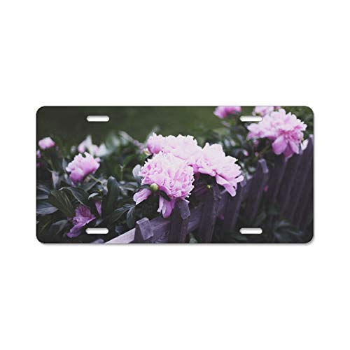 MIKONG Peonies Pink Fence Effects License Plate ()