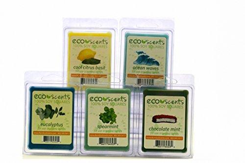 EcoScents 100% All Natural Soy Wax Melts -