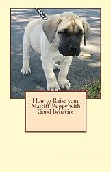 How to Raise your Mastiff Puppy with Good Behavior